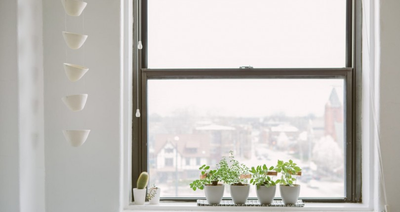 10 Indoor Herb Growing Kits to Make the Windowsill Garden of Your Dreams