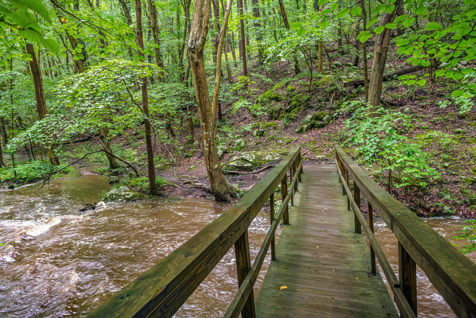 16 Awesome Nature Destinations in South Jersey